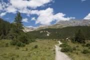 Alp Stabelchod - © Schweizerischer Nationalpark/Hans Lozza