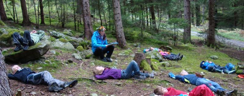 Projekttag im Wald