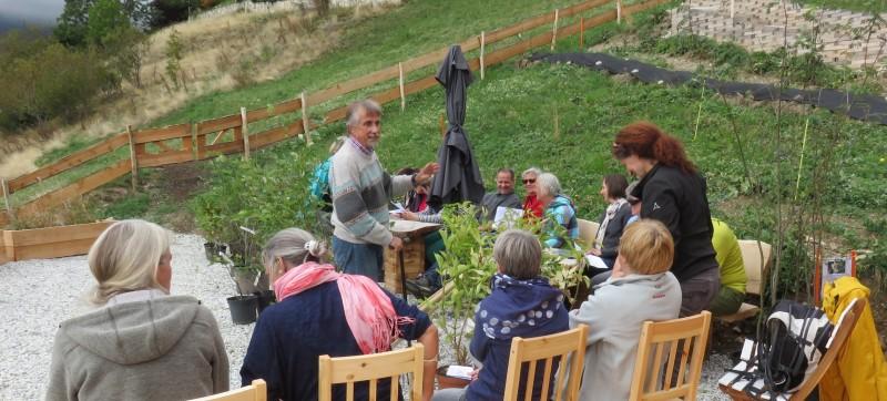 Kurs Naturapotheke im Garten