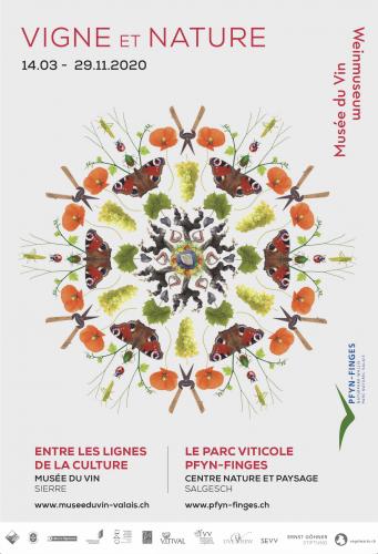 Vigne et nature - Entre les lignes de la culture