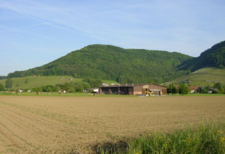 Villigen: Chlopfi's Bauernhof