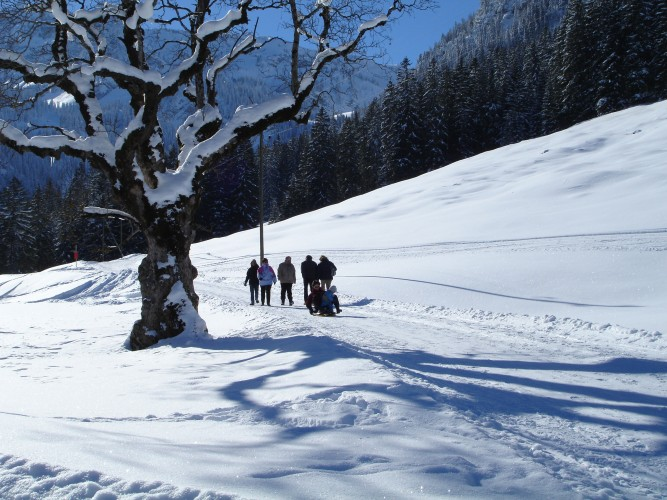 Sentiero invernale Grimmialp