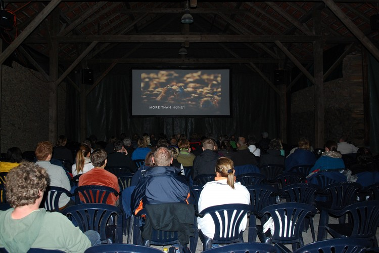 21 Jahre Sihlwald-Kino