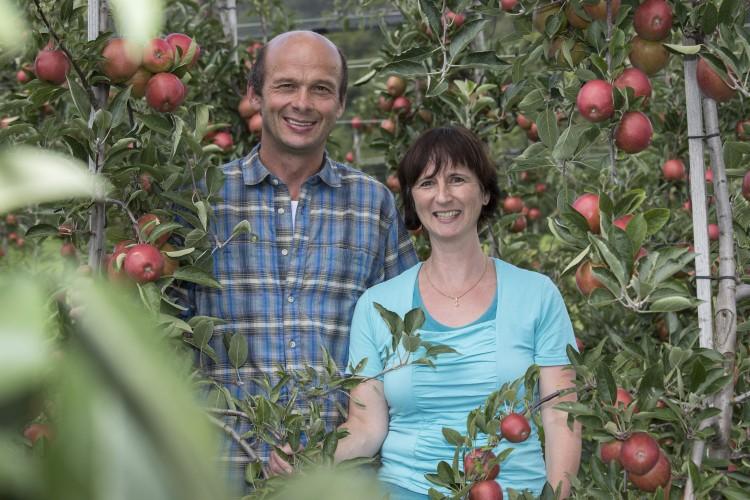 Wittnau: Obstbau Bründler