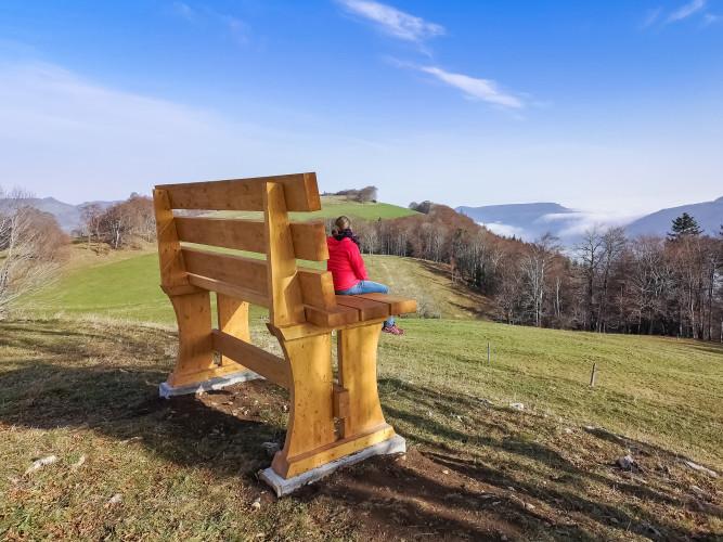 Riesen-Holzbank auf dem Güggel