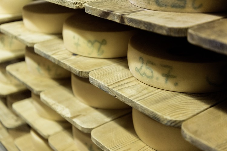Käse-Fest Schamserberg - © Frank Brüderli