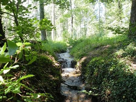 Wanderweg Abri Freymond