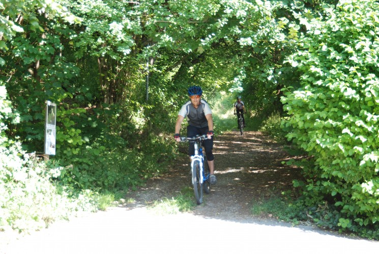Schaffhauserland Bike Nr. 50