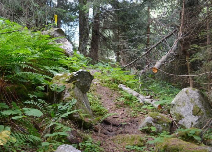 Alter Lengtalweg / Pilgerweg - © O