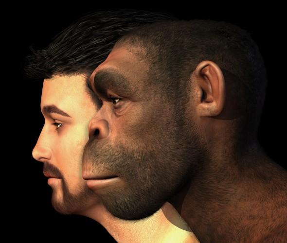 Gaumenfreude entlang der Evolution