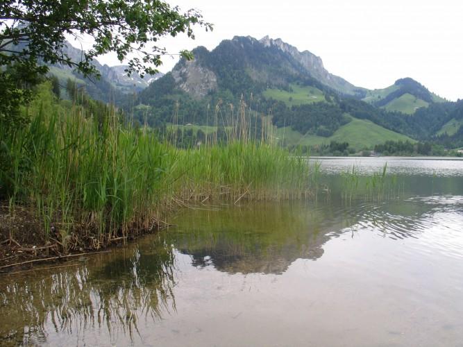 Sur le chemin du Lac Noir