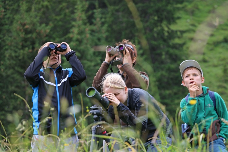 Exkursion in den Lebensraum der Alpentiere