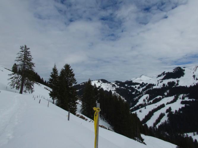 Gantrischli Trail