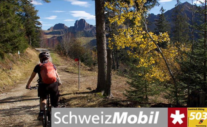 Gantrisch Bike-Panoramaweg (503) - © René Michel