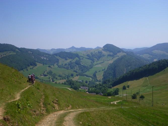 2. Solothurner Waldwanderung