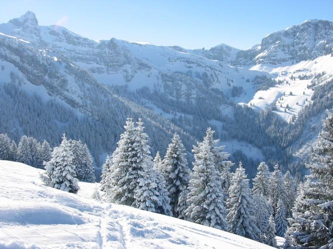 Schneeschuhtrail Grimmialp