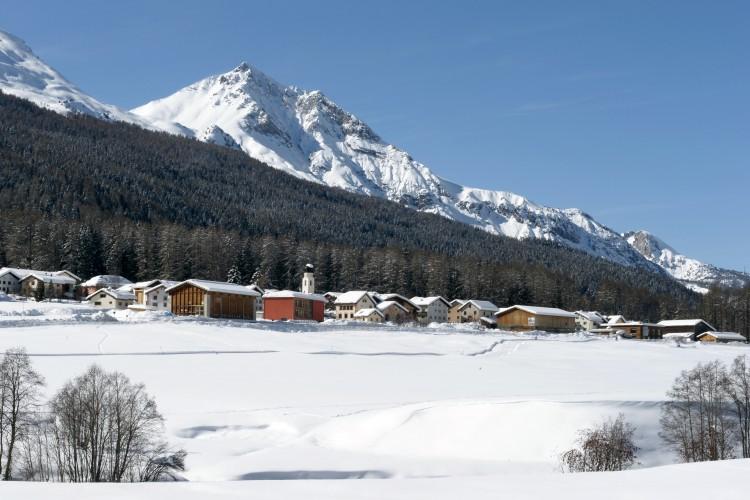 Ski de fond à gogo