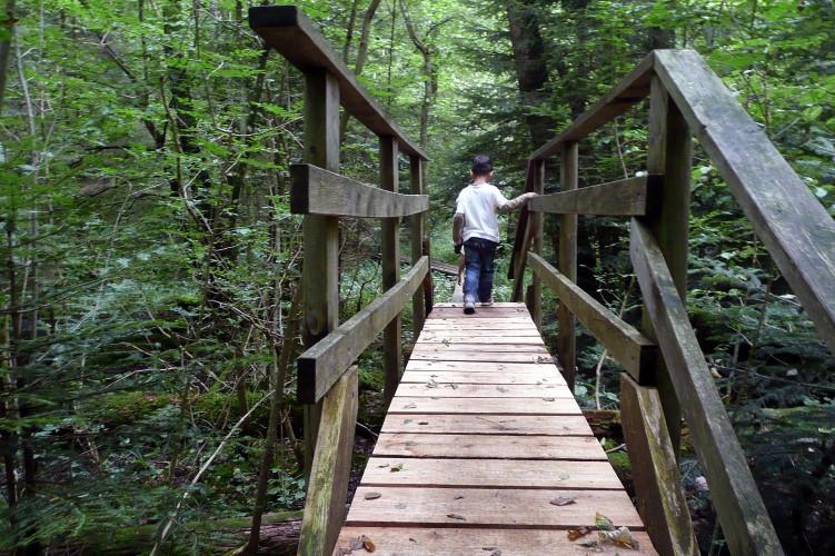 Sentiero-avventura nel bosco
