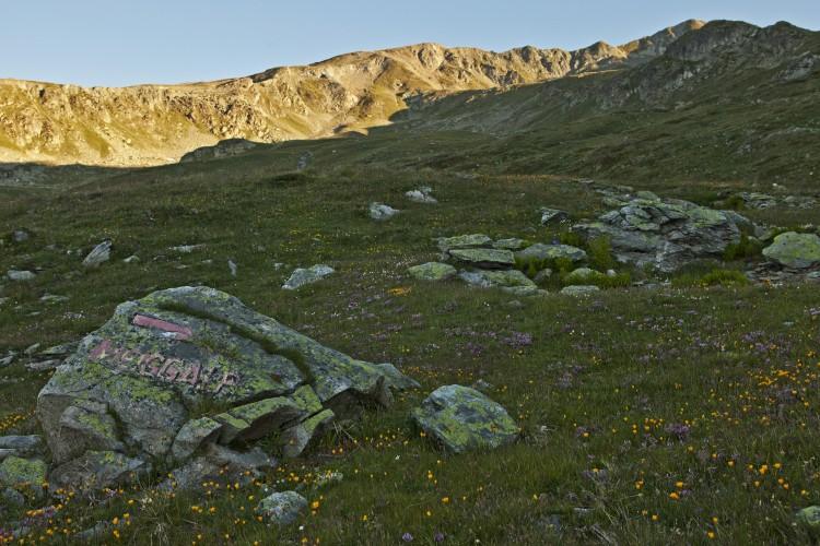Randonnée 4 alpages