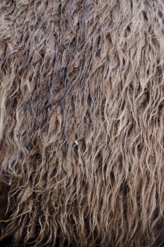 Lammwollprodukte