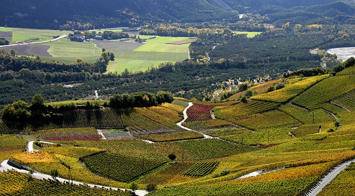 Escursioni viticol nel Vallese