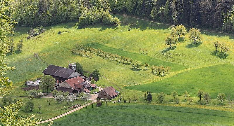 Anwil - Schupfart