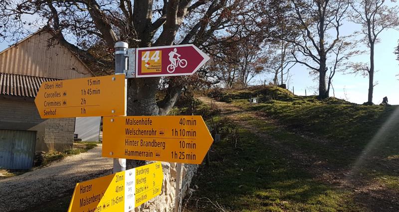 Mountainbike Route Weissenstein - Balsthal