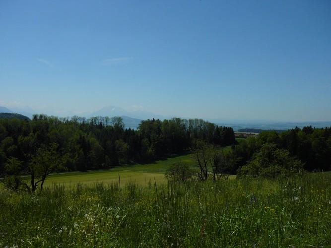 Aussichtspunkt Schweikhof