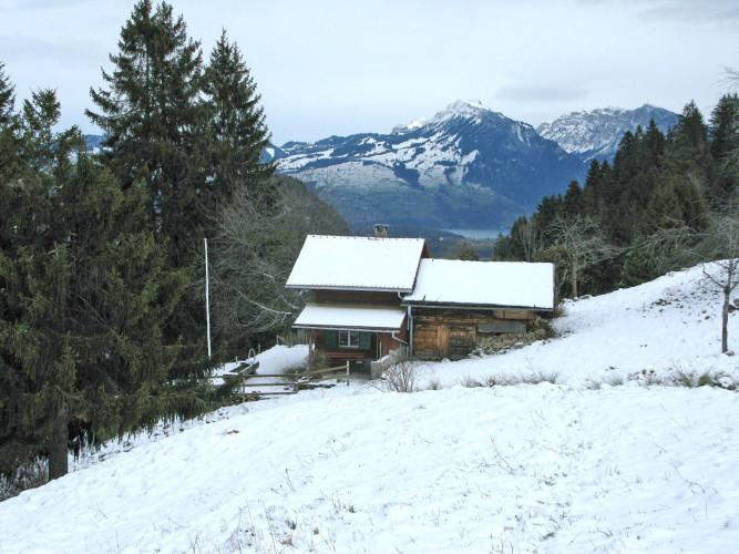 Alphütte Adlerhorst Lasweid