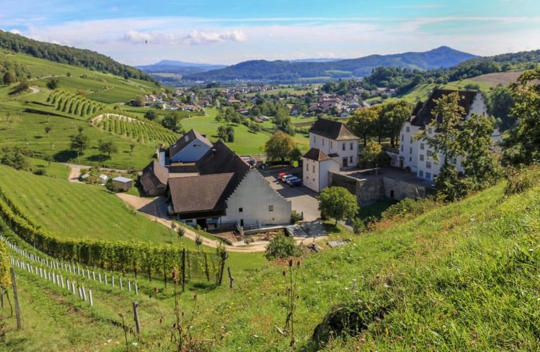Oberflachs: Biohof Kasteln