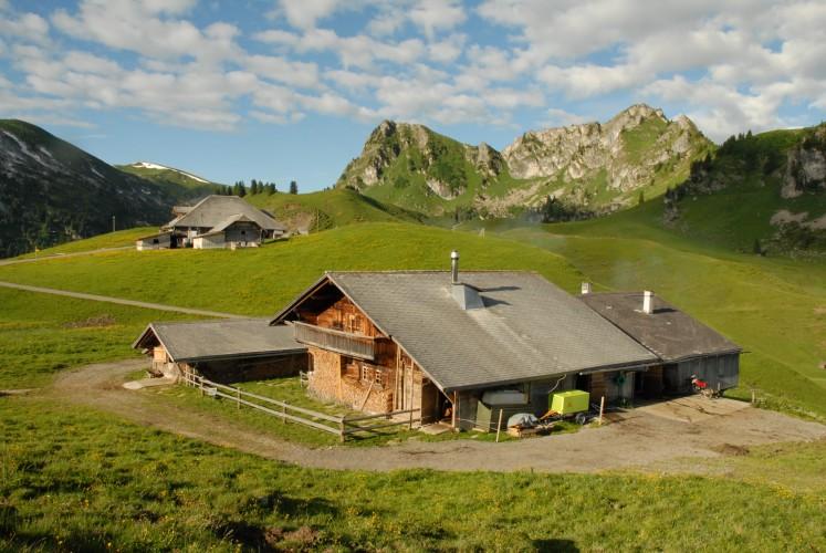 Economie alpine