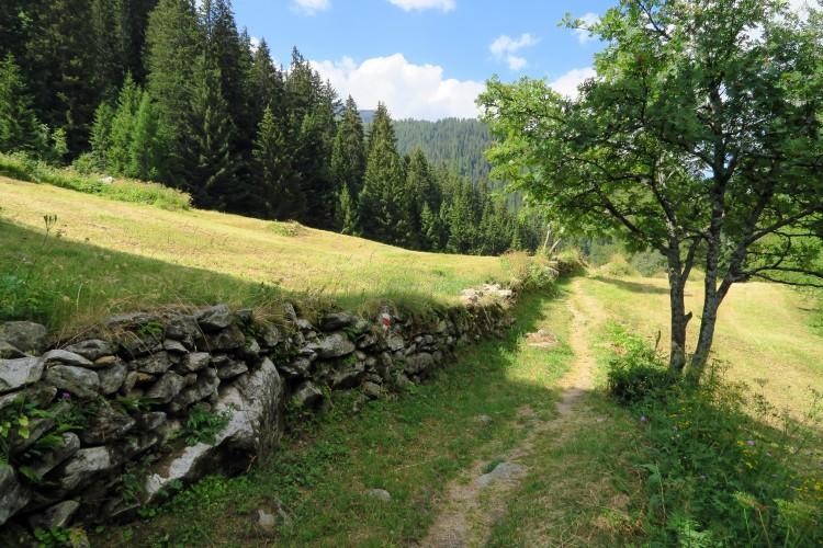 Trockensteinmauern & Mauerbau (Sek 1)