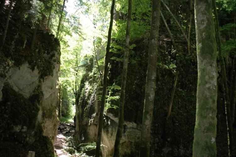 Wolfsschlucht-Weg