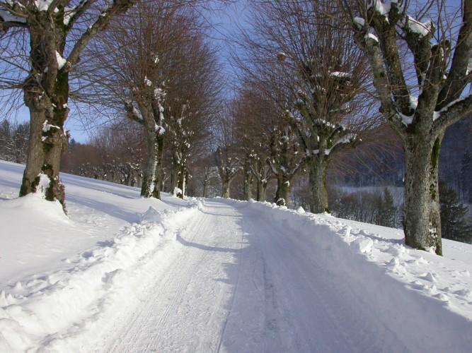 Ausgedehnter Winterspaziergang