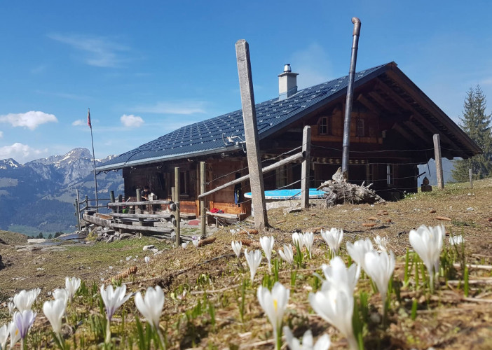 Alphütte Stucki`s Hüttli