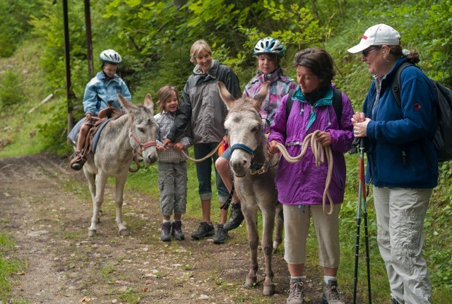 Randonnées avec ânes