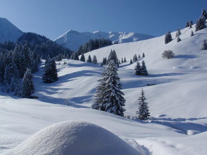 Schneeschuhtour Springboden