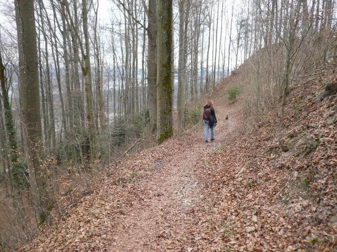 Felsenegg–Langenberg