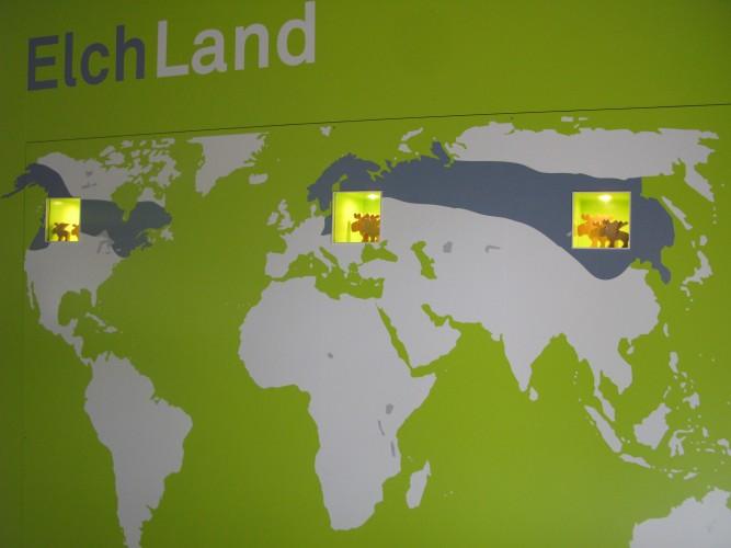Erlebniswelt Elchhaus