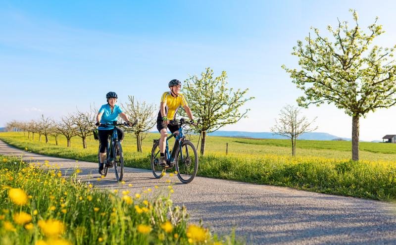 Naturpark-Weinland-Route