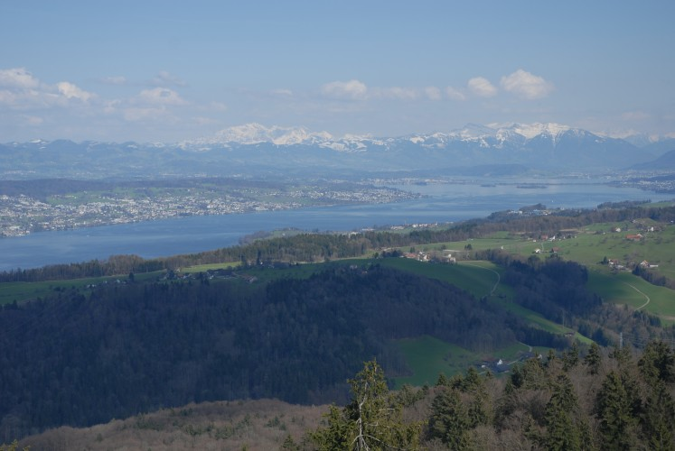 Aussichtspunkt Albishorn