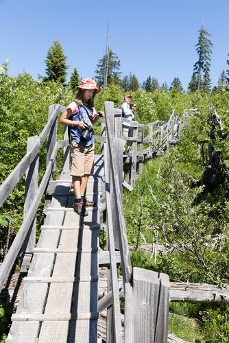 Natura Trail Gantrisch - 1