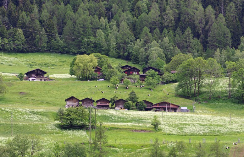 Grengiols-Tunetschalp - © Landschaftspark Binntal