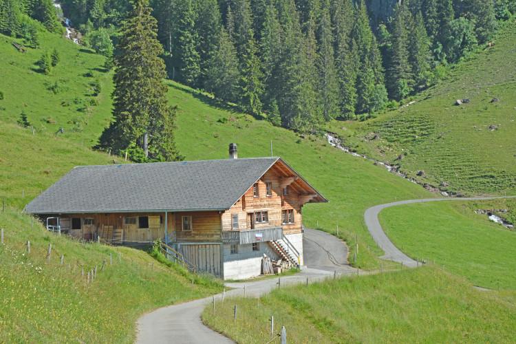 Alphütte Sennhütte Bärgli - ©