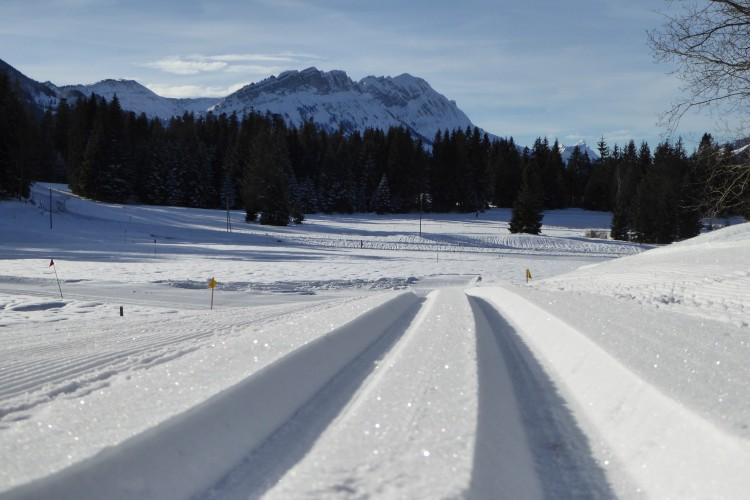 Langlauf-Loipen in Finsterwald, Entlebuch