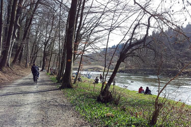 Tour Langenberg–Sihlwald