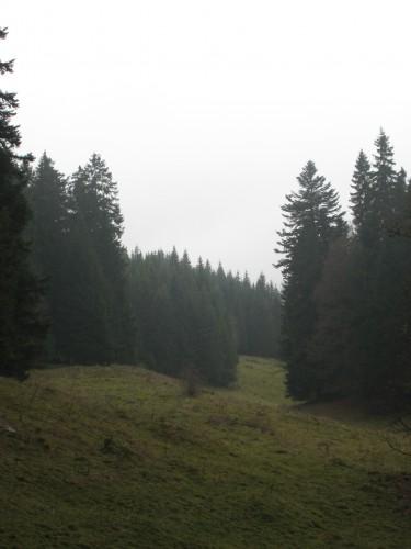 Sentier des Alpages, Bassins
