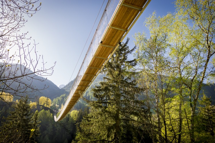 Pont suspendu «Goms Bridge»