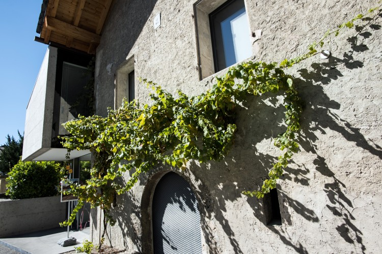 Weinmuseum Siders