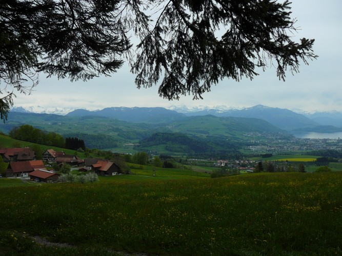 Aussichtspunkt Oberalbis
